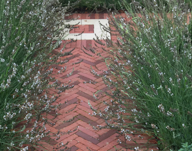 Use our clay pavers to create stunning pathways, driveways and more.
