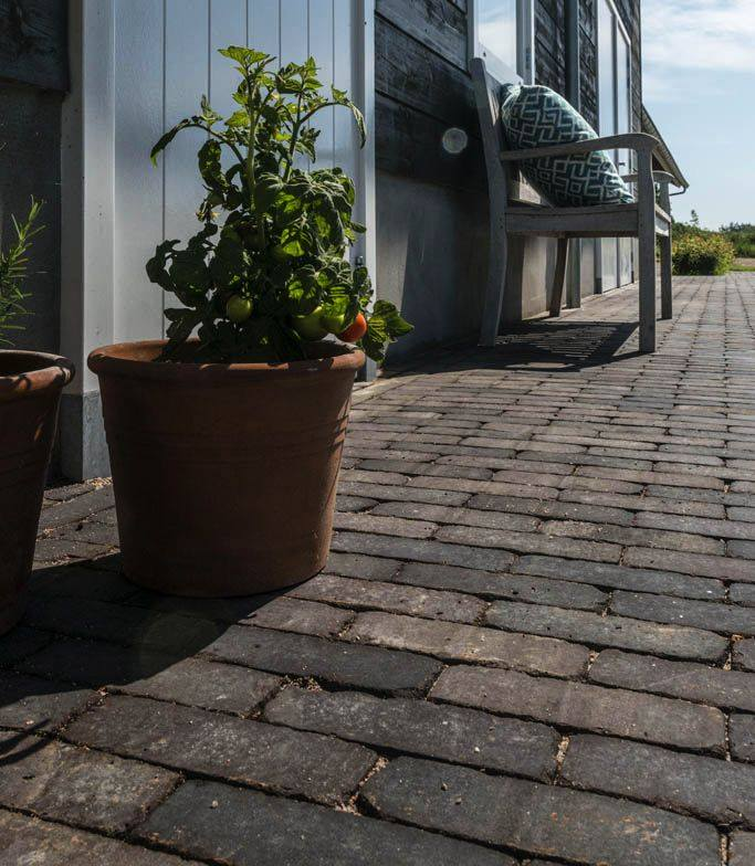 Our Moderna Clay Pavers are perfect for creating a charming, traditional feel in your garden. Paired with terracotta planters and a wooden bench.