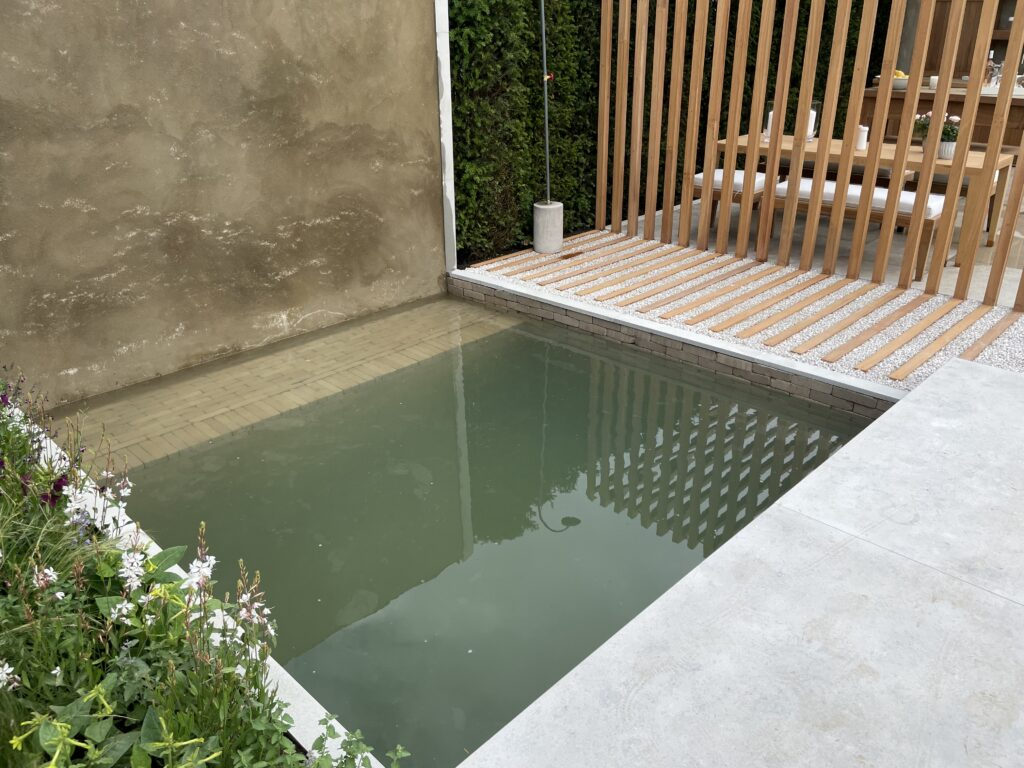 The clay pavers in the plunge pool add interesting detail.